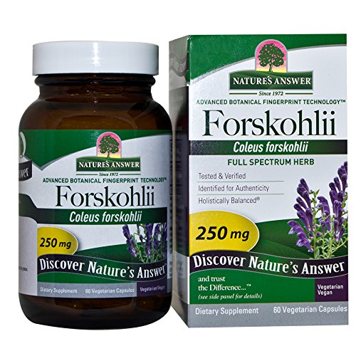 Nature's Answer Forskohlii, 60-Count