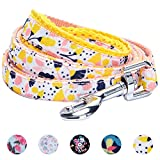 Blueberry Pet 5 Patterns Durable Spring Made Well Blooming Floral Print Dog Leash in Creamy White, 5 ft x 5/8'', Small, Leashes for Dogs