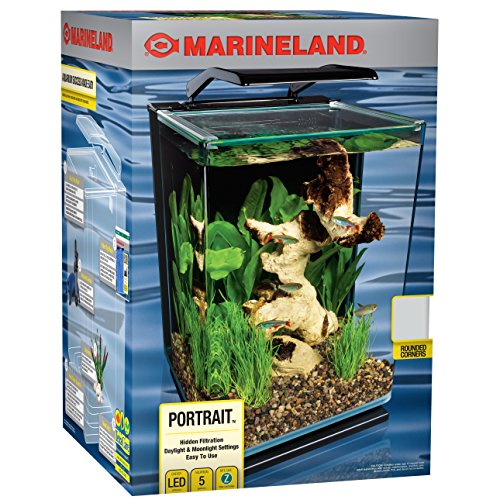 Marineland ML90609 Portrait Aquarium Kit, 5-Gallon w/ Hidden Filter