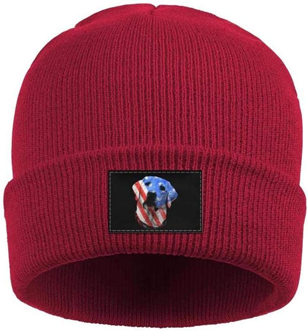 Mens Slouchy Beanie Hat Cashmere Hats Vintage American Flag Labrador Warm Cap