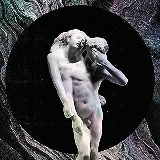 Reflektor (2LP Vinyl) by Arcade Fire (B00F1CRSKM)   Amazon Products