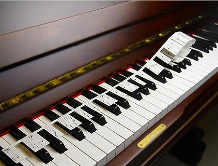 Piano Stickers para Aprender Piano o Teclado, se Pegan en el Piano, Sin Pegamento, No Necesita Cortar, Fácil de Llevar, Reutilizable, Versión ...
