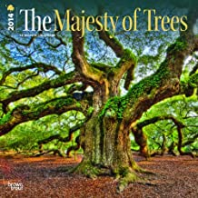 The Majesty of Trees - 2014 Calendar