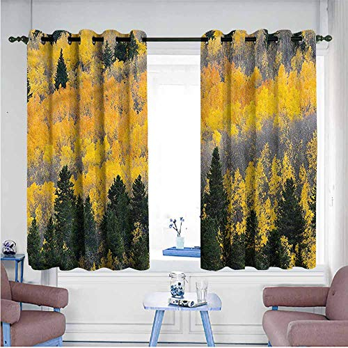 Mdxizc Printed Curtain Fall Colorful Aspen Trees USA Bedroom Blackout Curtains W55 xL45 Suitable for Bedroom,Living,Room,Study, etc. ()