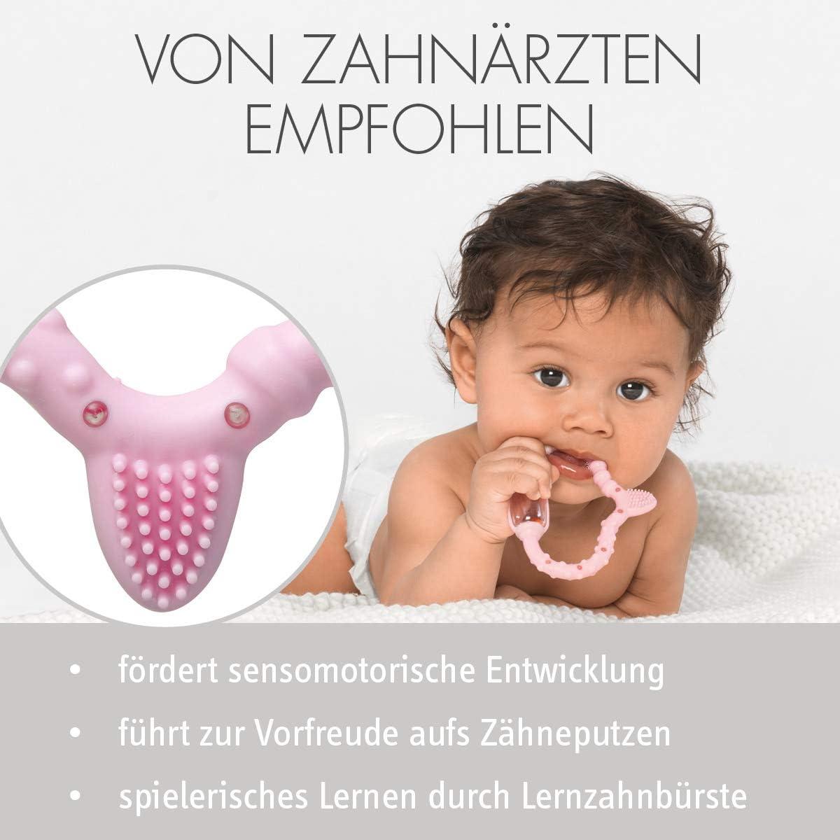 f/ür Babys /& Kleinkinder ab Geburt bis 2 Jahre ideal bei Zahnschmerzen Baby-Spielzeug mit Rassel Noppen Rillen /& Borsten Curaprox Bei/ßring