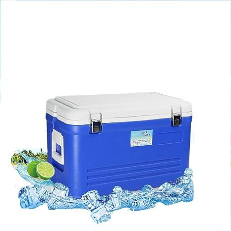 LFTS Refrigerador 33L fácil de Transportar. La Cerveza ...
