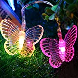 Fairy Lights Butterfly Battery Operated Led String Lights SHHE 2.5M 10 LED 2 Modes Decorative Lighting (Colored) Pack of 2