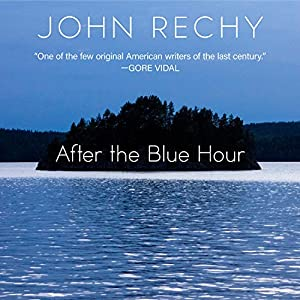 After the Blue Hour Audiobook
