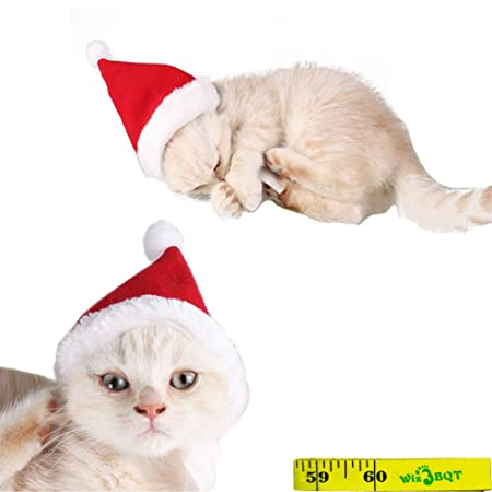 amazon com adorable cute cat dog christmas santa hat and bow tie