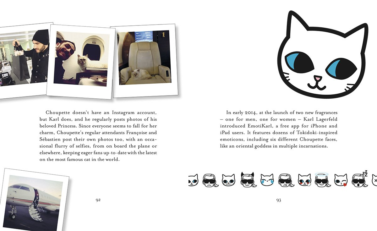 6a90d65a5447 Choupette: The Private Life of a High-Flying Fashion Cat: Amazon.co.uk:  Patrick Mauriès, Jean-Christophe Napias: 9780500517741: Books