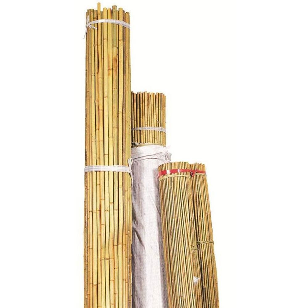 Bond 1'' X 8' Natural Bamboo Sold in packs of 50