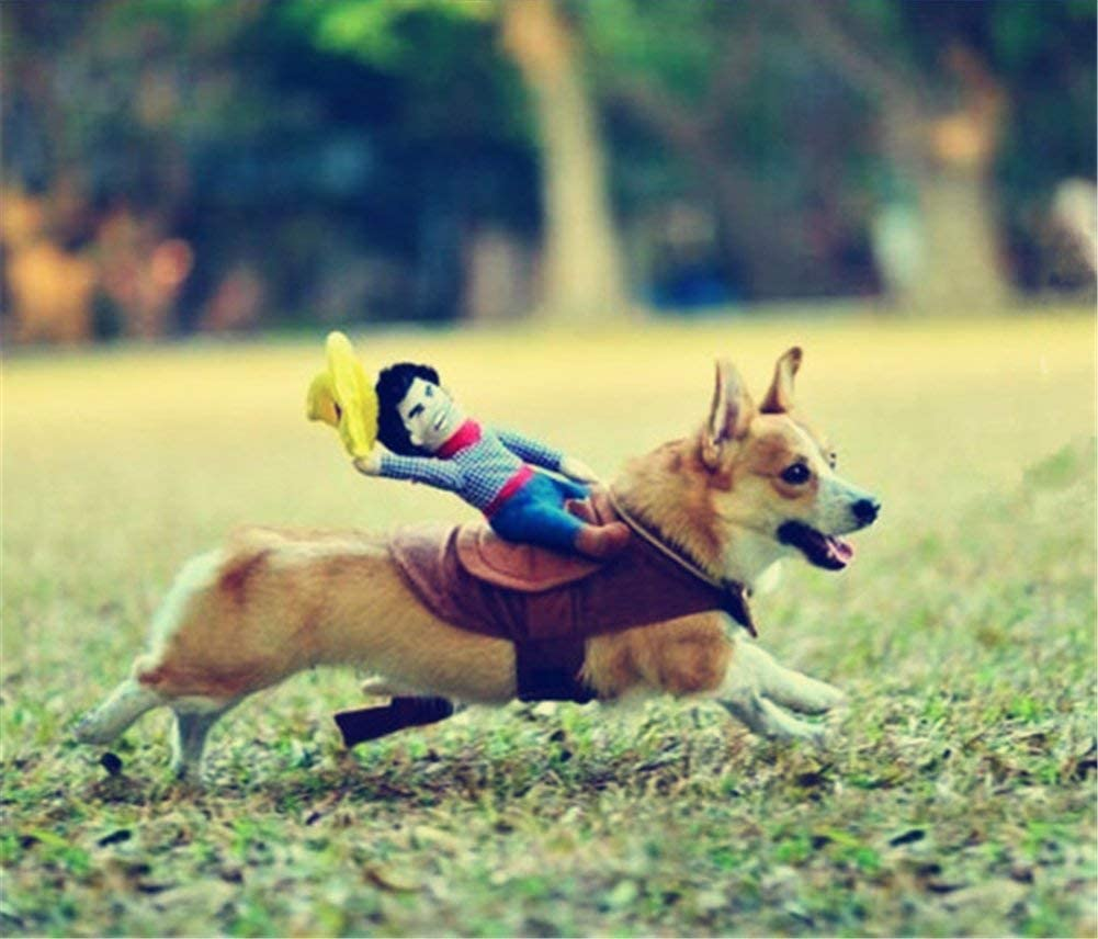Cowboy Rider Pet Costume