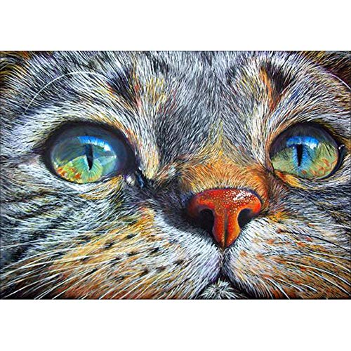 Cinhent Cute Cat Face, Full Drill 5D Embroidery Rhinestone Pasted DIY Diamond Painting Cross Stitch Home, Bedroom, Living Room, Popular Wall/Door Art Decor, Gift - 30 × 40CM