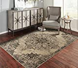 A.S Quality Rugs Large Distressed Living Room Rugs 8x10 Dining Room 8x11 Black Carpet Clearance Prime