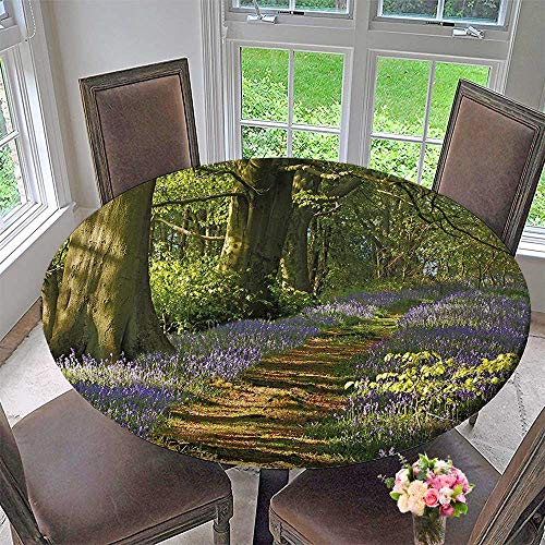 "Mikihome Premium Tablecloth A Carpet of Bluebells Spreads Through The Woodland in Staffordshire England Green Purple Everyday Use 43.5""-47.5"" Round (Elastic Edge)"