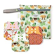 bumGenius Elemental 3.0 All-in-One One-Size Cloth Diaper with Organic Cotton - Little House in The Big Woods Collection - Keepsake Set: 3 Cloth Diapers and 1 Wet Bag