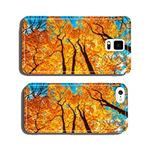 autunm trees cell phone cover case Samsung S5