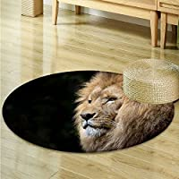 Area Silky Smooth Rugs Male lions head high definition Home Decor Area Rug -Round 51