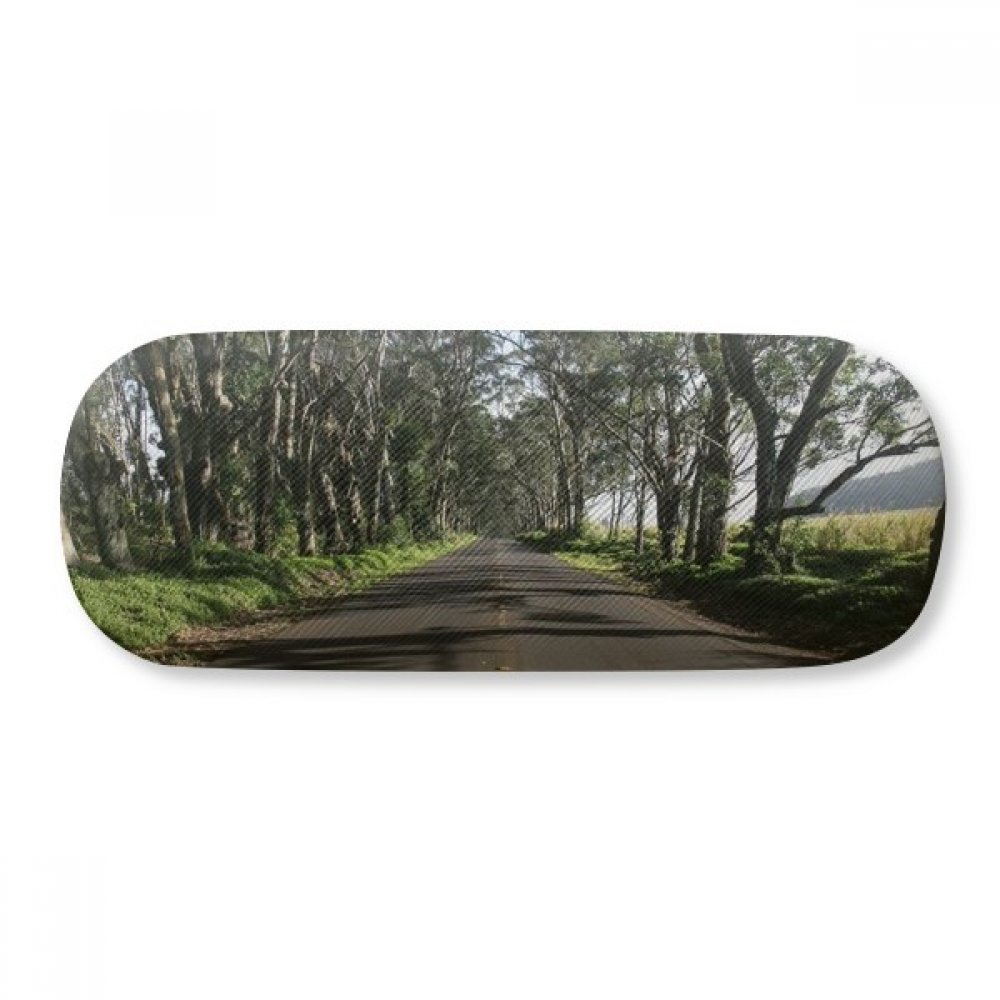 Green Forestry Science Nature Scenery Glasses Case Eyeglasses Clam Shell Holder Storage Box