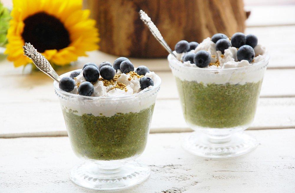 Starter Matcha Green Tea Powder 5x12oz | USDA Organic | Vegan | GMO-Free | Matcha for Baking | Latte | Smoothie | Cookies | Ice Cream