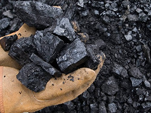 LU Blacksmith Bituminous Coal For Your Forge Stove Foundry Landscaping Heating 1-3 inches Chunks Comes in Multiple Weights 16, 25, 30, 50, 100 Pounds Mined in the US (16)