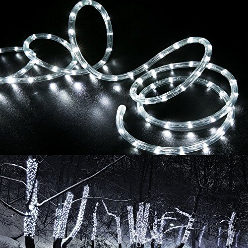 Outdoor Led Rope Lighting By The Foot - 3