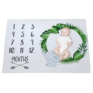 Amazon.com: mhjy bebé mensual Milestone sesiones de manta ...
