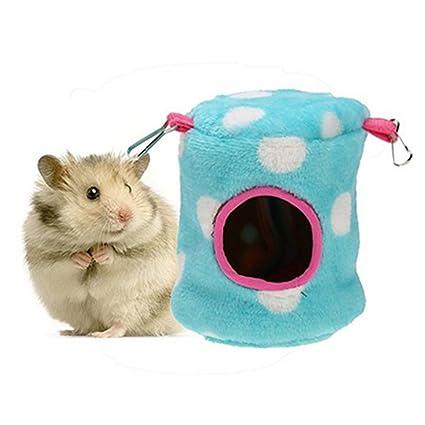 hamster dot com