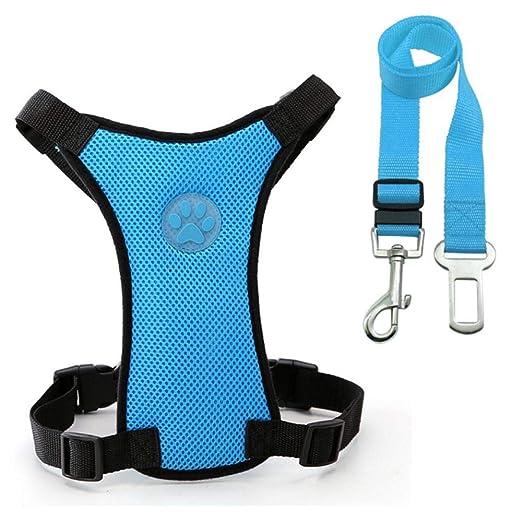 ERTY Dog - Cinturón de Seguridad para automóvil - Juego de arnés y ...