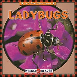 Ladybugs (Let's Read About Insects)