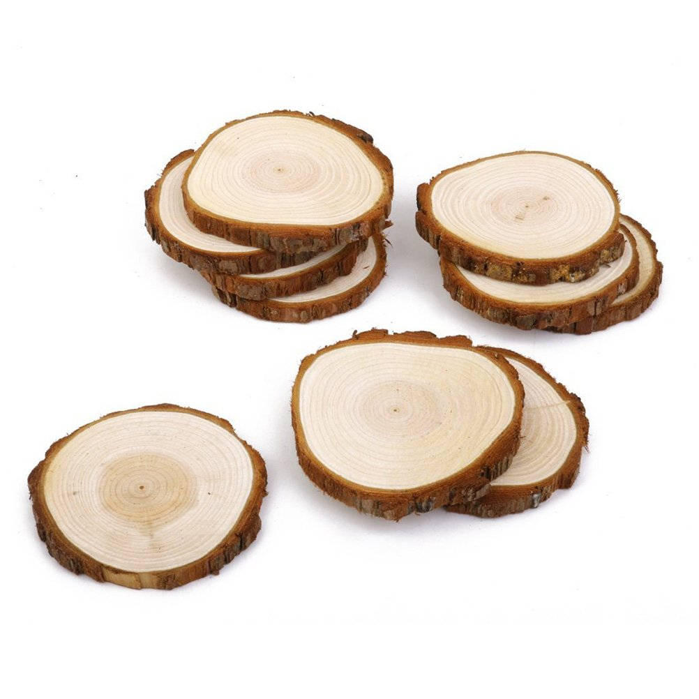 Amazon.com: BESTOYARD 10pcs Wood Log Slices Discs for DIY Crafts ...