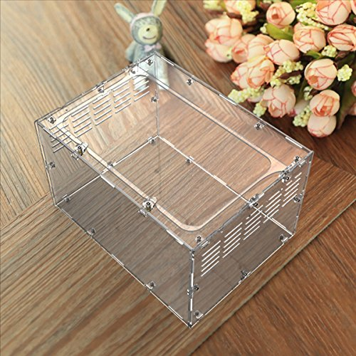 Dalle Craft Acrylic Reptile Terrarium Habitat for juvenile and small arboreal tarantulas chameleon snails or other Larval Reptiles (139.87.9inchH) (Chameleon Glass Cage)