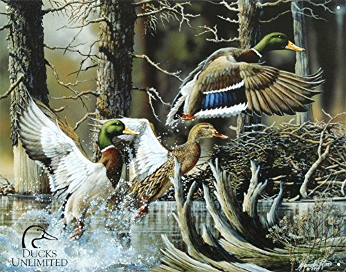 Poster Discount Ducks Unlimited Beaver Pond Tin Sign Tin Sign, -