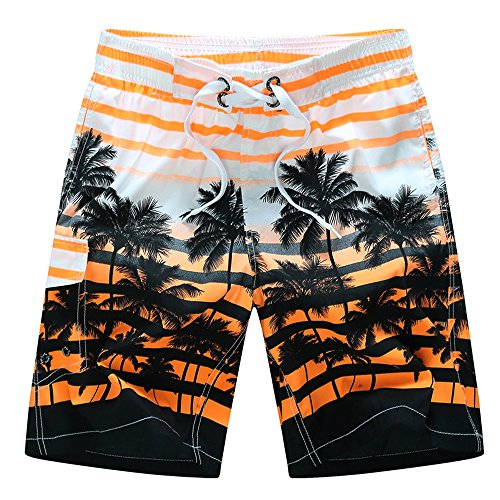 DAFENGEA Men's Summer Beach Swim Trunks Casual Quick Dry Surf Board (Palm Beach Stripe)