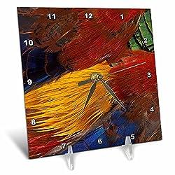 3dRose Danita Delimont - Feathers - Golden Pheasant feather fan design - 6x6 Desk Clock (dc_250131_1)