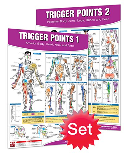Trigger Point Therapy Chart/Poster Set; Acupressure Charts - Myofascial Trigger Points - Massage Therapy Charts - Muscle Pain Relief Posters - ... Neuromuscular Therapy - Physiotherapy - Arm Labeled Diagram