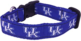 product image for NCAA Kentucky Wildcats Dog Collar (Team Color, Small)