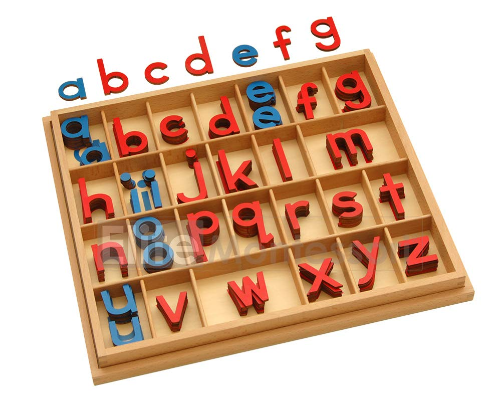 Montessori Small Wooden Movable Alphabet with Box (Red & Blue, 5mm Thick)