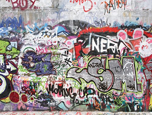 Jplo9|#Jp London MACR2200 1/8In Thick High Definition Resolution Gloss Acrylic Nero Grafitti Concrete Wall Obscenity Free at 3 Ft Wide by 2Ft - Concrete Definition Of
