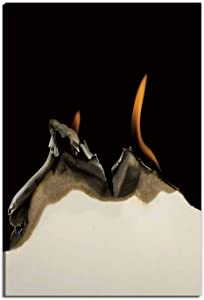 Hitecera Burning Edge of Paper Wall Art Decor for Bedroom,166570 Wall Art for Bedroom,12''Wx16''H