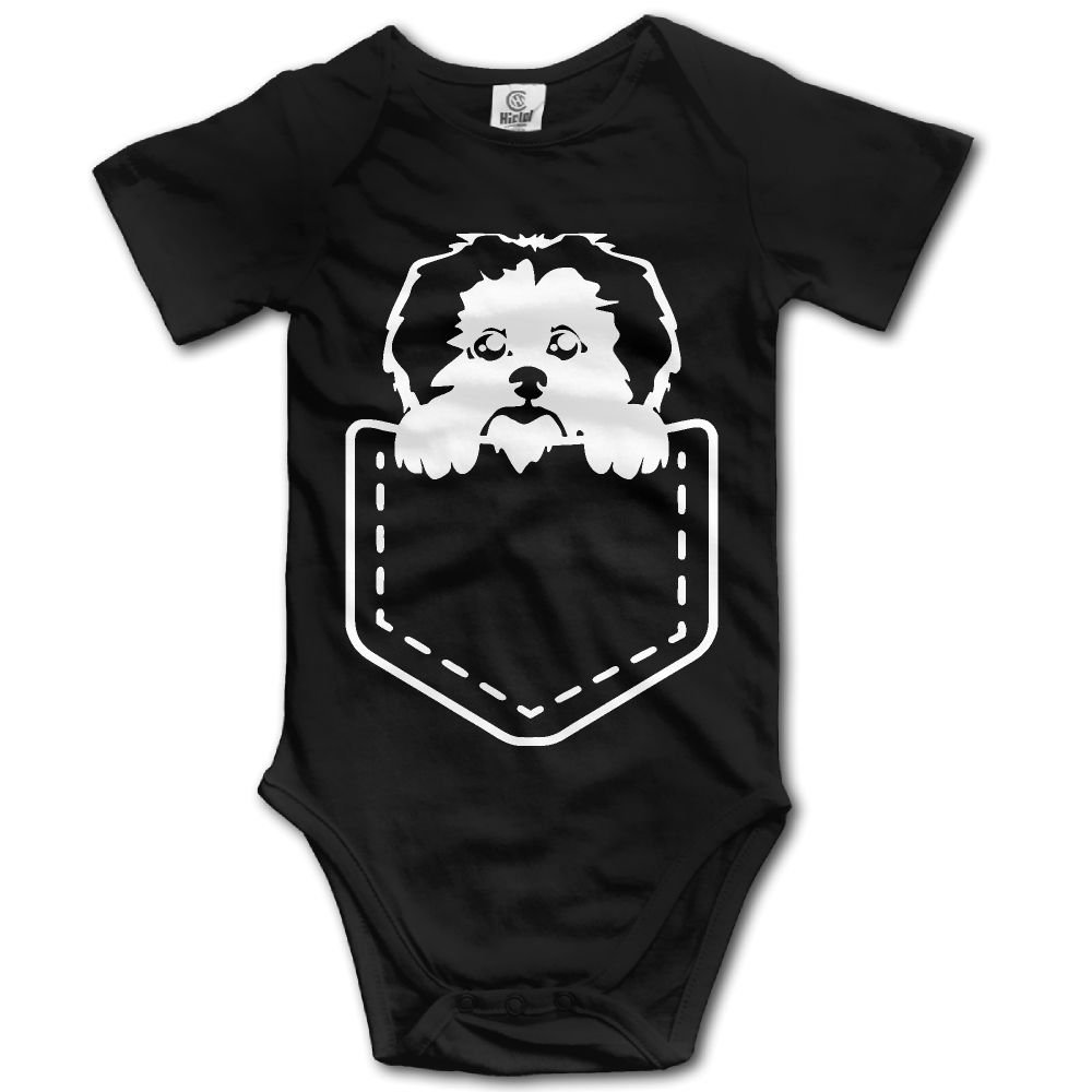 All I Need for Christmas is My Havanese Baby Girls 100/% Cotton Tees Toddler
