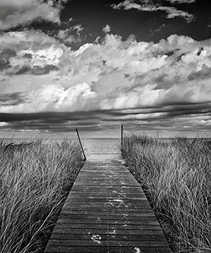Amazon.com: Black and White Beach Photography, Cape Cod
