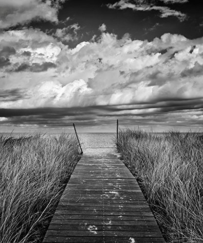 Black and white beach photography cape cod art marthas vineyard photo beach decor