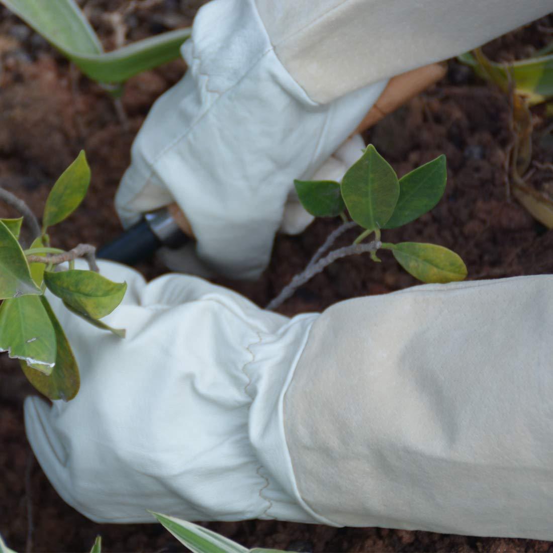 Thornproof Leder Gartenhandschuhe Langarm f/ür Frauen und M/änner L Rose Beschneiden Floral Gauntlet Garten Handschuhe