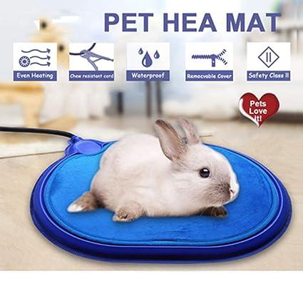 Placa de calefacción eléctrica del Animal doméstico Cojín de calefacción Manta eléctrica Gato Perro Conejo Cojín