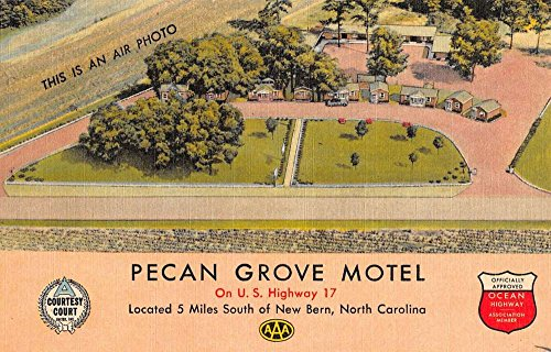 New Bern North Carolina Pecan Grove Motel Aerial View Antique Postcard K41504