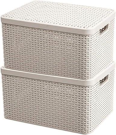 Yqzq- Cesta de Almacenamiento de ratán con Tapa de plástico Caja de cesto de exhibición apilable, for baño, Sala de Estar, Cocina o salón  Cajas de Regalo Decorativas (Color : White1): Amazon.es: