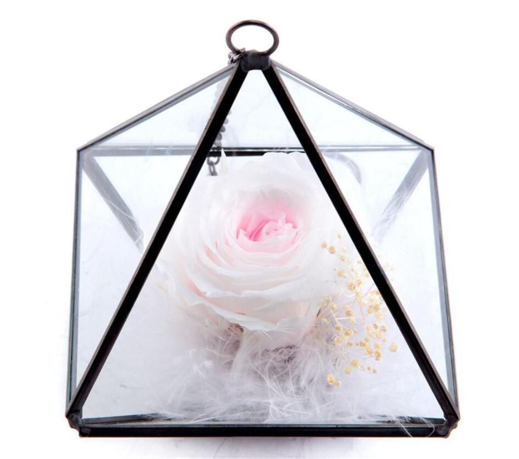 Konserviertes frisches Blumen-Glas-Gewächshaus Bunte Farbe Rosen ...