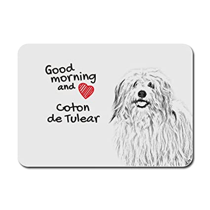 7bd7bde353985 Image Unavailable. Image not available for. Color: Coton de Tulear, a  computer mouse pad with an image of a dog