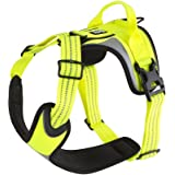 Hurtta Active/Dazzle Harness for Dogs